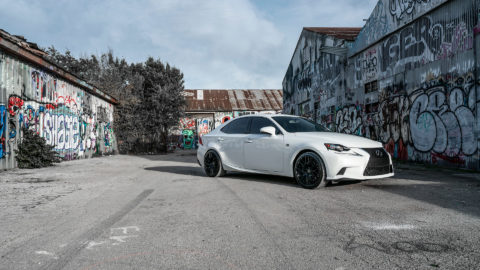 White Lexus IS300 - MOMO RF-20 Wheels - Matte Black