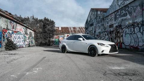 White Lexus IS300 - MOMO RF-20 Wheels - Matte Black