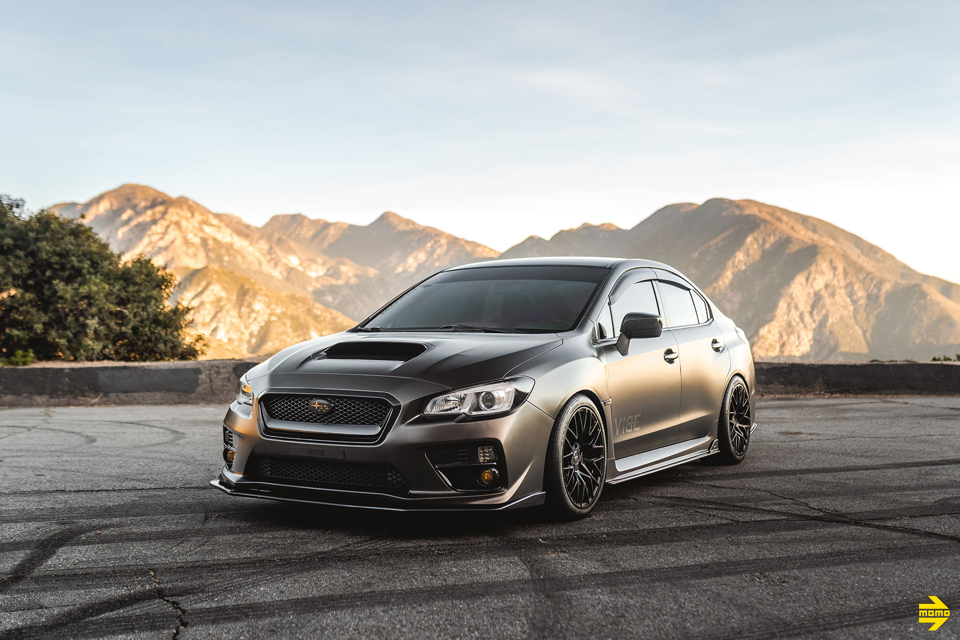 Metallic Rootbeer Brown Subaru WRX Evo Eye - MOMO Catania Wheels in Gloss Black